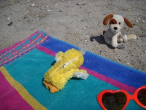Sunning my back at the beach