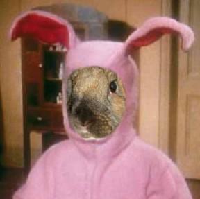 @BunnyJeanCook in her bunny jammies