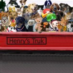 Truck rides with Henry